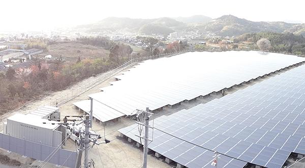 201303-sanuki-7s.JPG